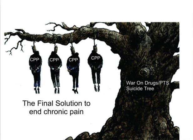 Suicide Tree 1